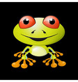 Abstract Frog vector image