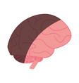 brain cartoon shadow vector image vector image