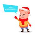 merry christmas cute pig wearing santa claus hat vector image vector image