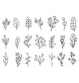 0027 hand drawn flowers doodle vector image vector image