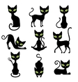 Cats Icon Set vector image
