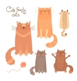 Cute set with cats and kittens vector image