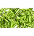 green peas watercolor grocery harvest fresh vector image vector image