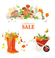 rich natural collection of autumn composition and vector image vector image