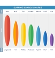 Surfing boards types infographic vector image vector image
