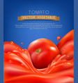 background with splashes waves of red tomato vector image vector image