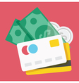 Credit Cards and Money Icon vector image vector image