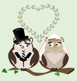 owl bride and groom vector image