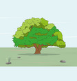 tree stands on nature colored drawing vector image vector image