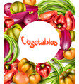 vegetables eggplant pepper yellow tomatoes vector image vector image