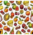 exotic fruit and berry seamless pattern background vector image vector image