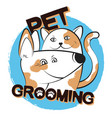 pet care cat and dog vector image vector image
