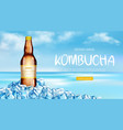 kombucha bottle mockup ad banner fresh tea drink vector image vector image