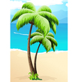 Palm trees on a beach vector image vector image