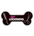 pet grooming and care vector image vector image