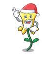 santa daffodil flower mascot cartoon vector image vector image