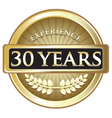 Thirty Years Experience Gold vector image