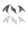 avian wings vector image vector image