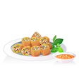 fried spring roll vector image vector image