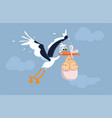 funny exhausted stork carrying triplets cartoon vector image vector image