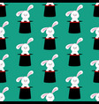 rabbit in magic hat pattern vector image vector image