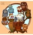 Ten different owls on a branch cartoon series vector image