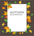 white blank paper on autumn background vector image