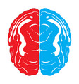 isolated brain icon vector image