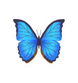 butterfly blue color poster vector image vector image