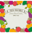 frame of organic vegetable vector image vector image