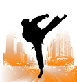 karate vector image