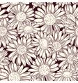 set four seamless daisy patterns vector image