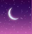 starry moonlit night vector image