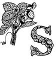 strawberry vector image