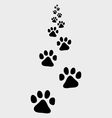 trail dog vector image vector image