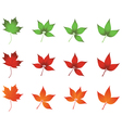 colored leaves vector image