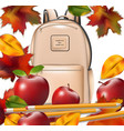 school bag and autumn leaves back to