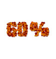 60 percent autumn leaves sale sign vector image vector image