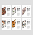 collection of flyer or poster templates for cat vector image vector image