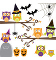Happy Halloween Owls collections vector image