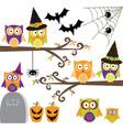 Happy Halloween Owls collections vector image vector image