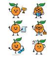 set orange fruit character design vector image