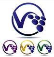 vine grape icon vector image vector image