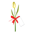 a fresh yellow tulip with red ribbon vector image vector image