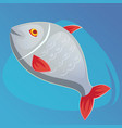 fish salmon in cartoon vector image