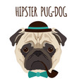 hipster pug dog cartoon pug dog background vector image vector image