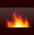 realistic transparent fire flames on black vector image vector image