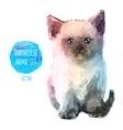 set watercolor cute cat vector image vector image