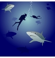 Sharks and scuba divers vector image vector image