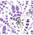 Lavender seamless pattern vector image